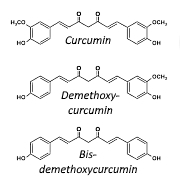 More muscles in old age thanks to curcumin supplementation