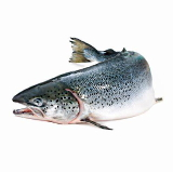 Omega 3 fatty acids reduce cancer mortality