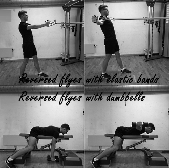 Flyes and reverse flyes: an elastic band instead of dumbbells
